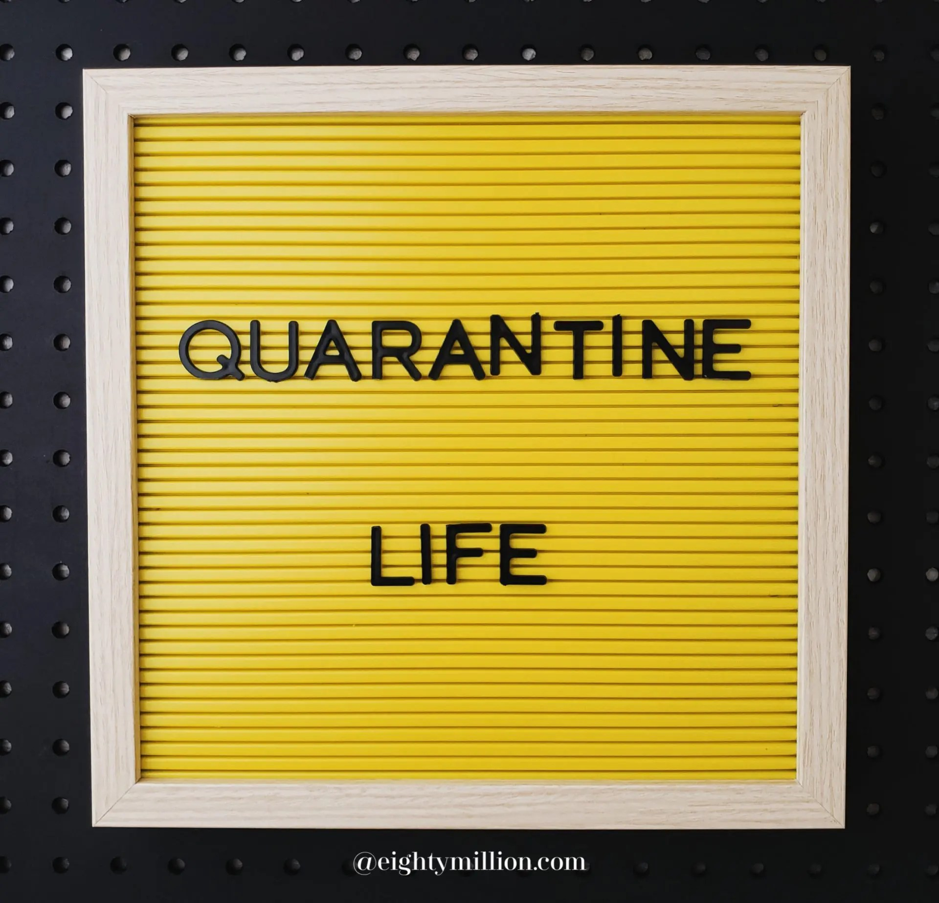 Quarantine Life 2020 Eightymillion