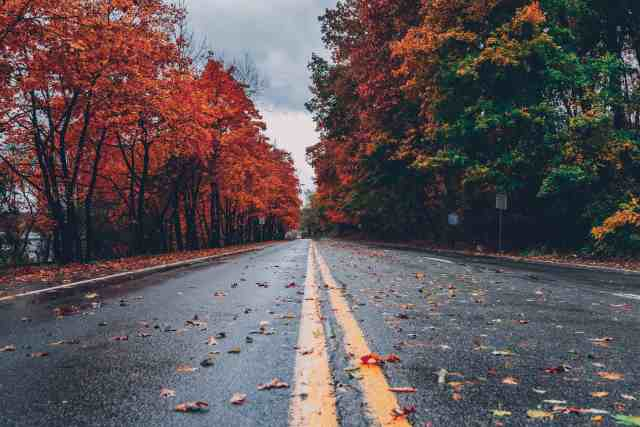 An open road and leaves changing color on trees.