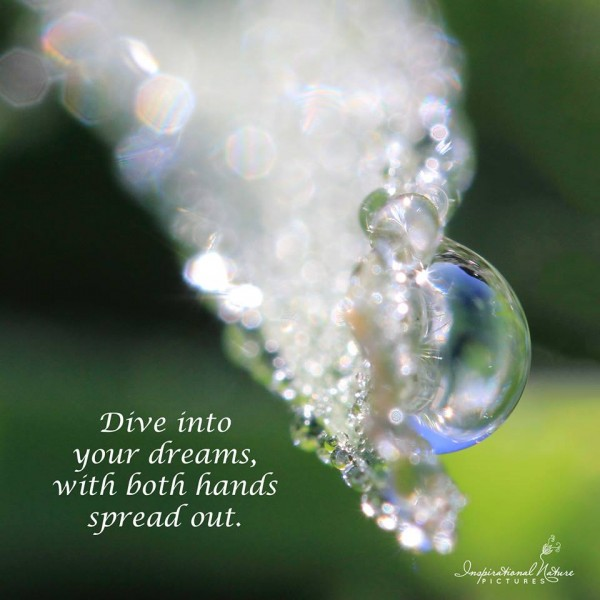 Dive into your dreams with both hands spread out