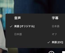 9758ae65c445c5221b3736c29dc187ac - 【2020年版】おすすめ英語学習ツール Netflix同時字幕機能LLN