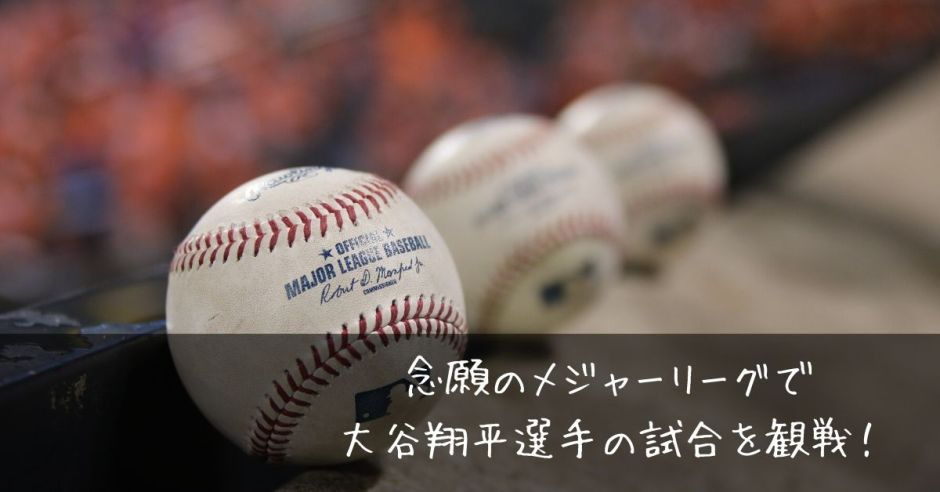 b44d41cf1f0b6eade41d8b4f89ae6d0f 1 - 念願のメジャーリーグで大谷翔平選手の試合を観戦!