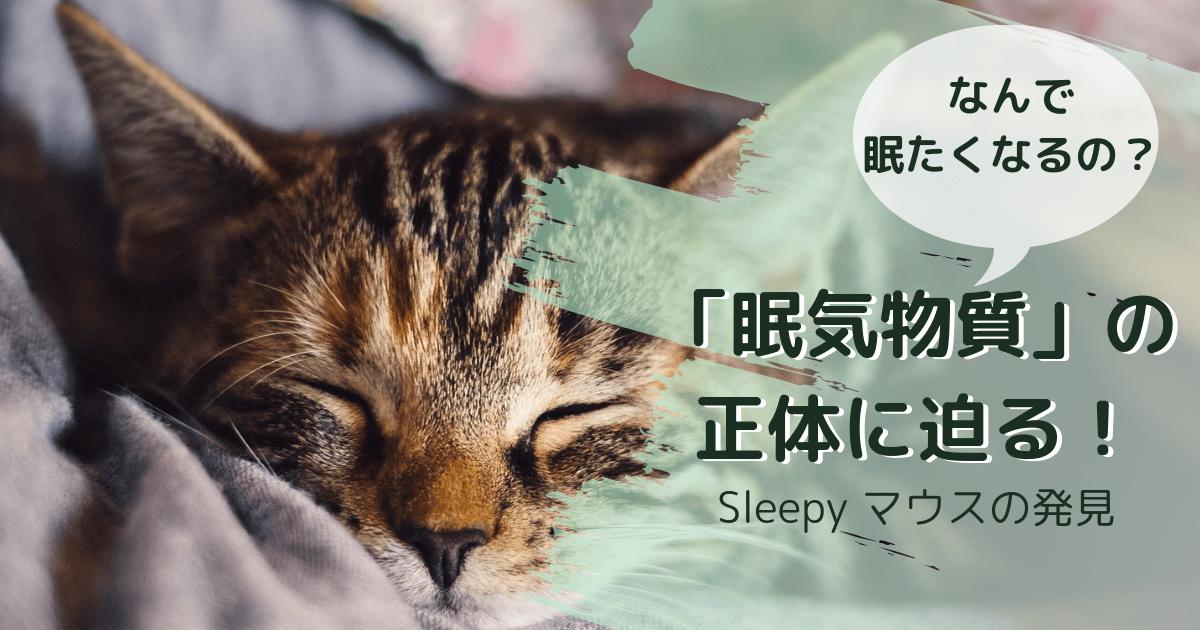 なんで眠くなるの?眠気の正体に迫る!
