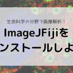 生命科学の分野で画像解析!ImageJFijiをインストールしよう