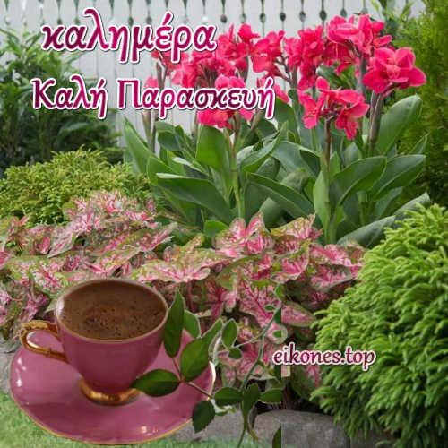 Καλημέρα και καλή Παρασκευή (εικόνες)