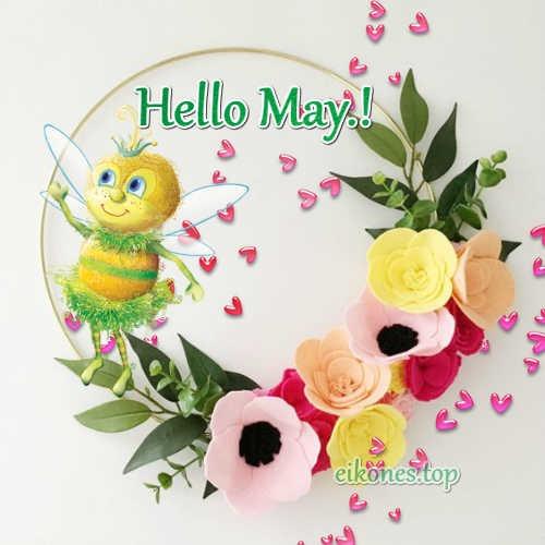 Hello May.!-eikones.top