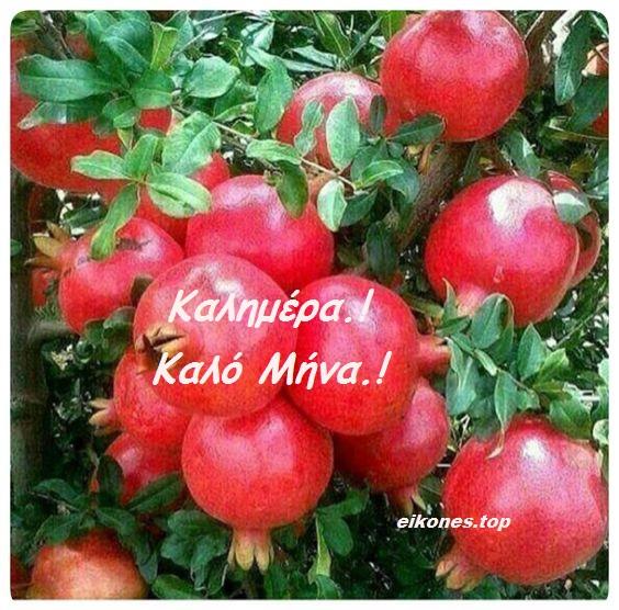Καλημέρα-Καλό μήνα και τυχερό με eikones.top