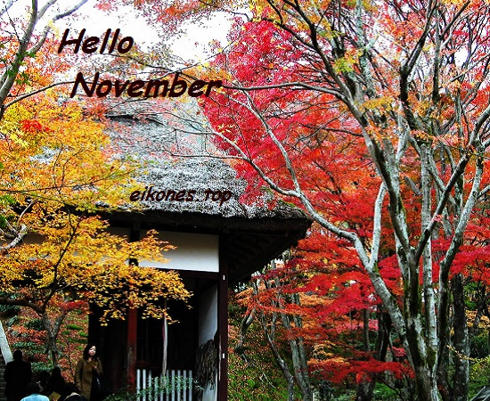 Read more about the article Εικόνες για Hello November