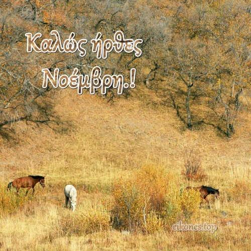 Καλώς ήρθες Νοέμβρη.! eikones.top
