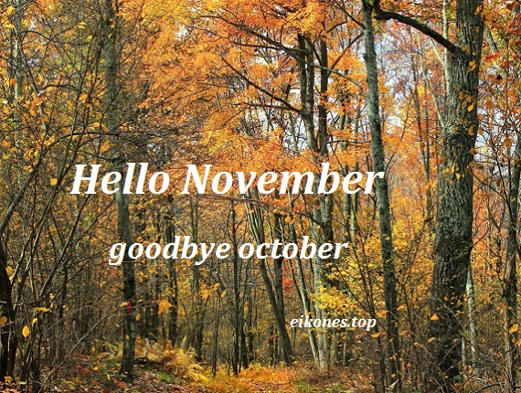 Hello November-eikones.top