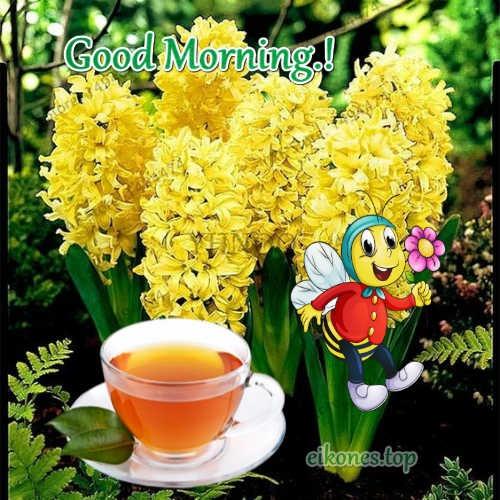 Εικόνες με λουλούδια για Good Morning.!