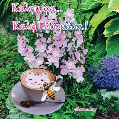 Καλημέρα-Καλή Εβδομάδα σε όλους με τα χρώματα της φύσης στην ζωή μας.!
