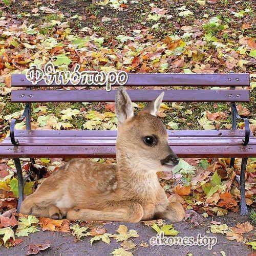 Καλό Φθινόπωρο σε όλους με eikones.top