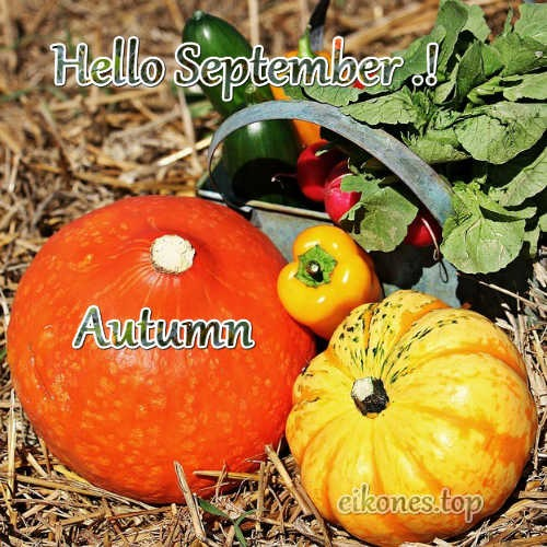 Welcome September, Hello September-eikones.top