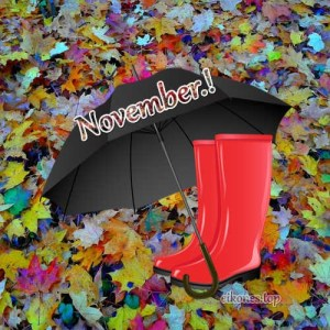 Beautiful images for November. Good month to all!