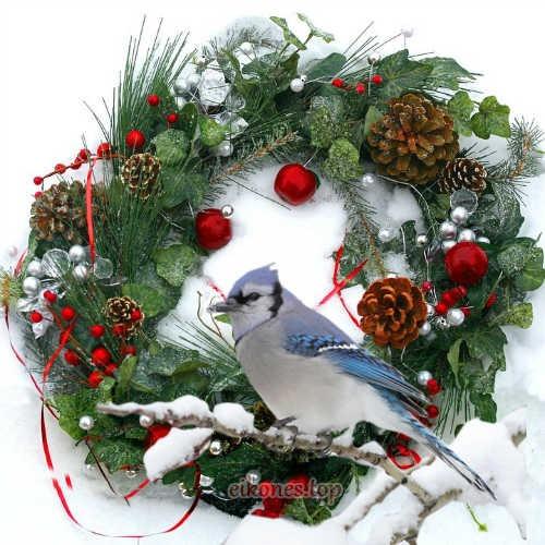 Όμορφες Χριστουγεννιάτικες Εικόνες Τοπ.!(1)