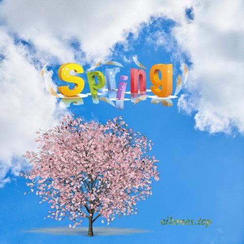 Βeautiful images for spring with colors and flowers