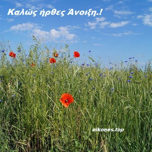 Εικόνες της Άνοιξης-eikones.top