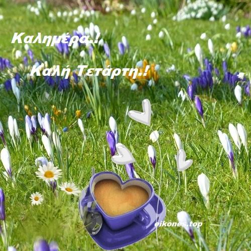 Καλημέρα Και Καλή Τετάρτη με όμορφα λουλούδια της άνοιξης.!-eikones.top