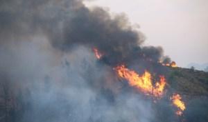 Read more about the article Φωτιά: Συνεχείς αναζωπυρώσεις στην Αρχαία Ολυμπία – Δύσκολη η κατάσταση σε Μεσσηνία και Ανατολική Μάνη