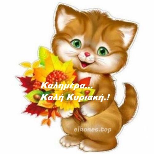 Φθινοπωρινές εικόνες για καλημέρα Κυριακής.!-eikones.top