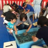 第21回全国金魚すくい大会 静岡下田予選大会