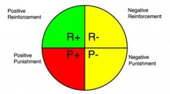 Four quadrants of operant conditioning