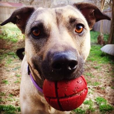Clara holding ball