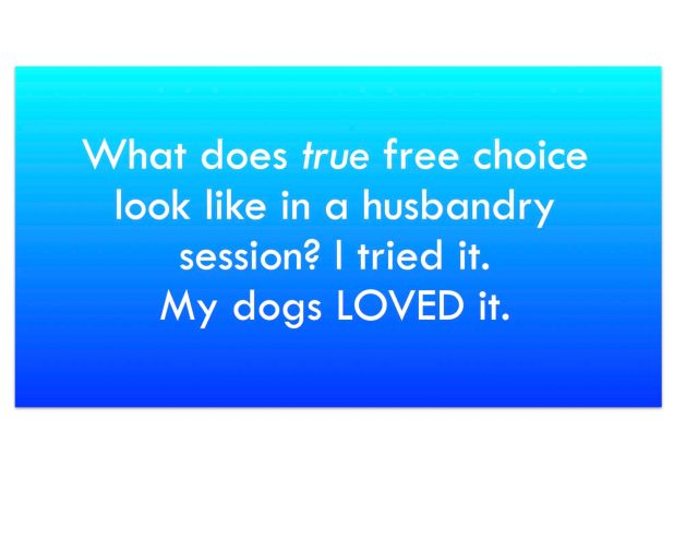 Text: What does true free choice look like in a husbandry session? I tried it. My dogs LOVED it.