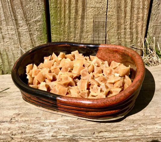 ceramic dish of small peanut butter dog treats