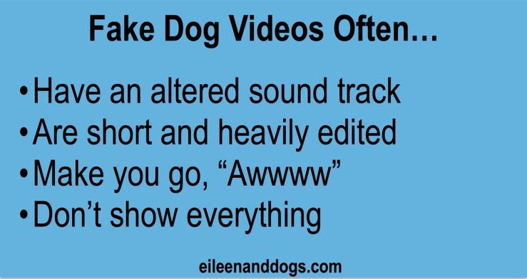 "Text: Fake Dog Videos Often 1) Have an altered sound track; 2) Are short and heavily edited; 3) Make you go, ""Awwww""; 4) Don't show everything"