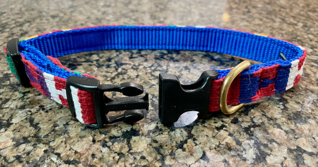 bright colored fabric dog collar with plastic snap