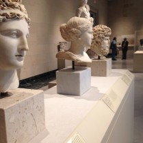 Greek and Roman busts