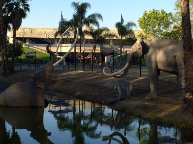 The famous tar pits where thousands of animals met their fate.