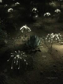 Fireflies dance in the night