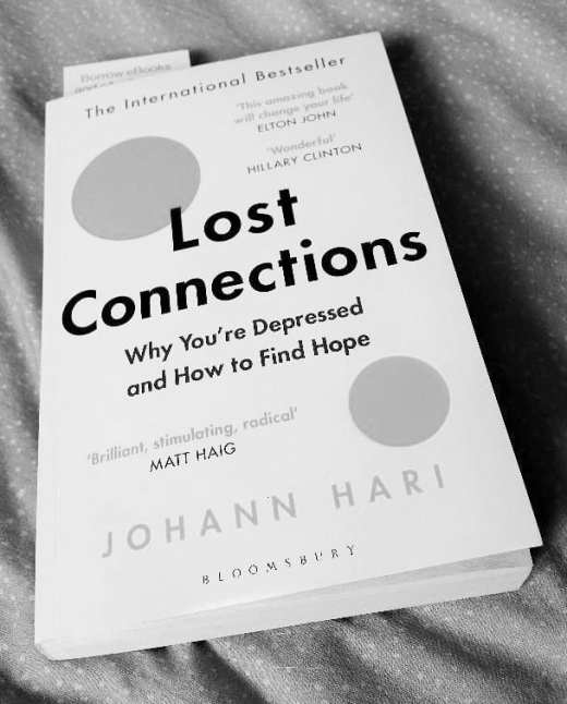 Lost Connections book by Johann Hari