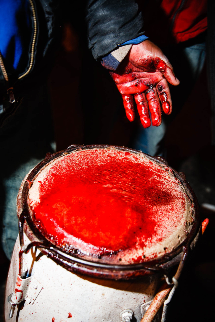 There will be blood Candombe drumming in Montevideo Uruguay  Eilon Paz  Food Travel and