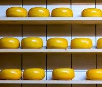 Украина стала покупать больше импортного сыра