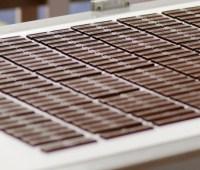 В Украине стали производить больше шоколада и меньше хлеба