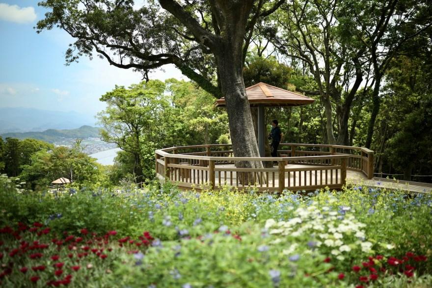 こんこん山広場|色彩あふれる花々で彩る「牧野植物園」の憩いの広場。