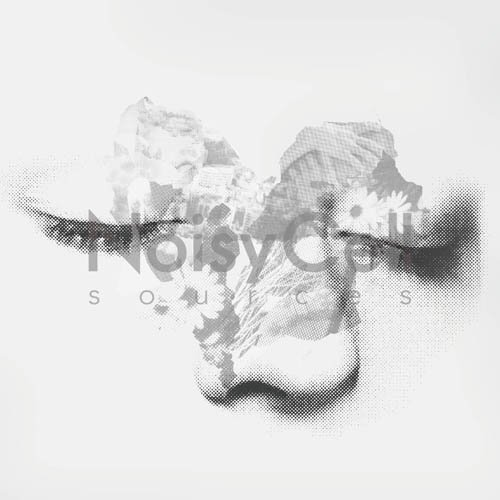 NoisyCell - Sources