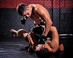 Mixed Martial Arts fuer Einsteiger