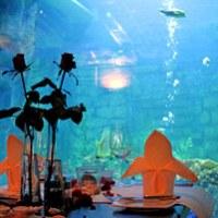 Dinner unter Wasser fuer 2 in Neuwied