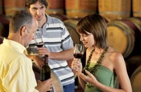 """In vino veritas"""" – Hier erfahren Sie alles ueber Wein!"""""""