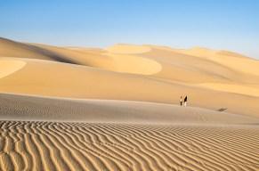 Wild und abenteürlich: Entdeckt Namibia!