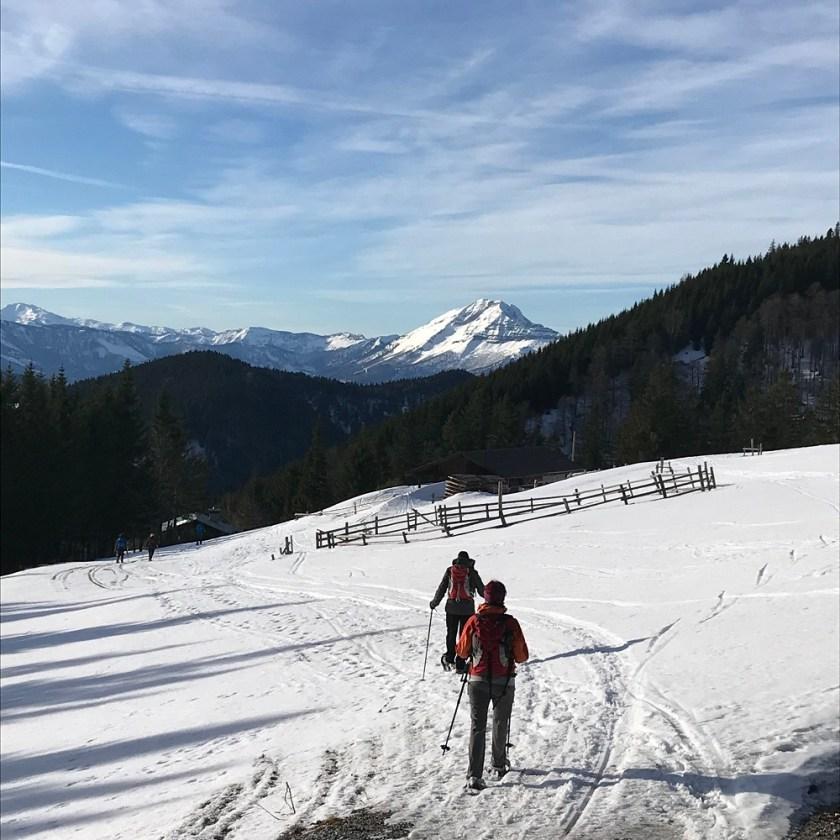 Abstieg vom Tirolerkogel mit Blick zum Ötscher