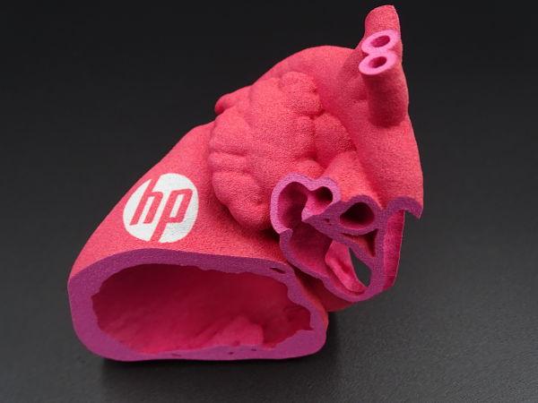 3D gedruckter Querschnitt eines Herzens