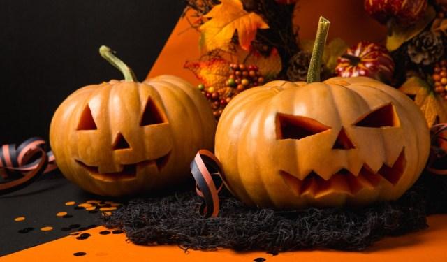 Kann Man Halloween Kürbis Essen