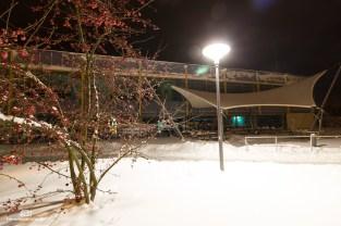 Winter_Münzbachtal091