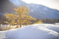Berchtesgaden_eh2_01_2018_072