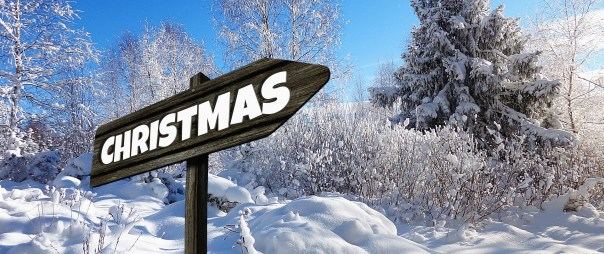 Einkaufstrolley Vergleich Geschenkideen zu Weihnachten Teil 2